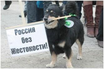orenotrada-novosti-2017-02-13_02