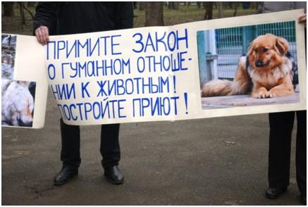 orenotrada-novosti-2017-02-13_03