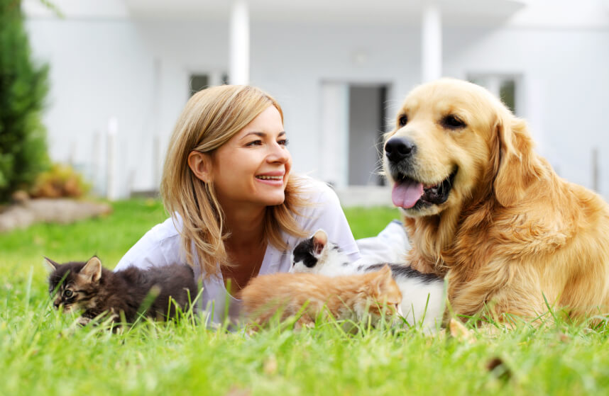 Cheerful woman and pets lying and resting on the green field.